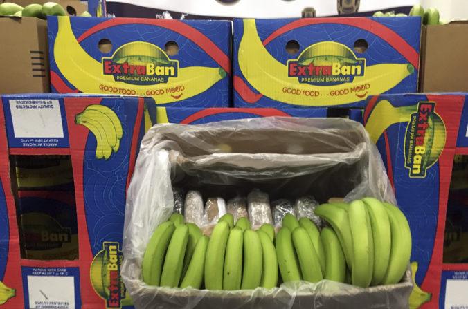 Portugalská polícia našla stovky kilogramov kokaínu, boli ukryté pod banánmi v škatuliach