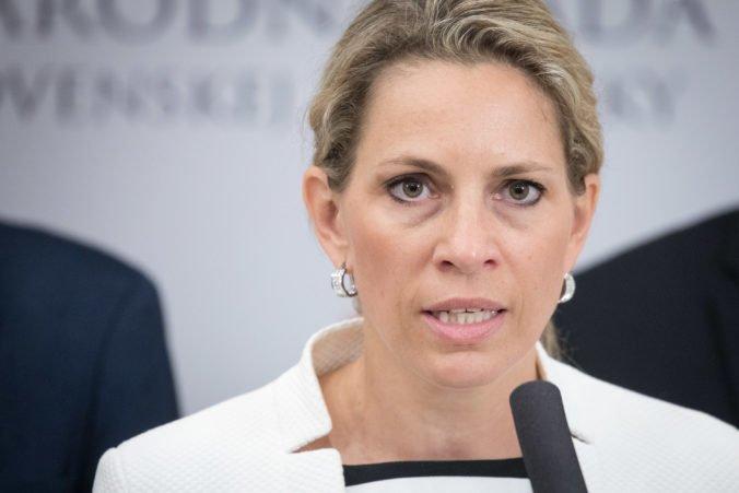 Politológ: Šance Demokratickej strany sa vďaka odídencom zo SaS zvýšia, ale do parlamentu sa nedostanú