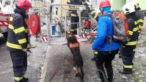 Foto: Záchranári prehľadávali ruiny 12. poschodia paneláku v Prešove, nikoho nenašli