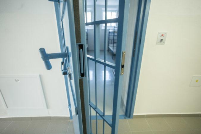 Projekt novej väznice napreduje, o výstavbu majú záujem štyri spoločnosti
