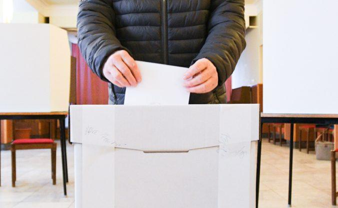 Referendum by sa po voľbách mohlo dočkať zmien, strany ho chcú zatraktívniť