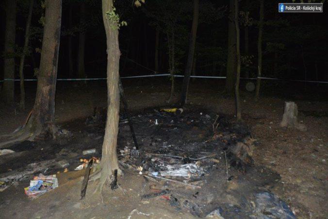 V Košiciach zomrela žena pri požiari lesného príbytku, polícia spustila vyšetrovanie