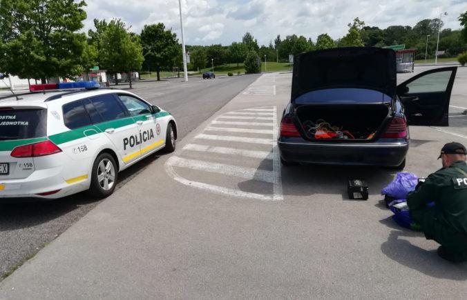 Policajný pes pomohol odhaliť drogovú trestnú činnosť, dvaja muži skončili v putách (foto)