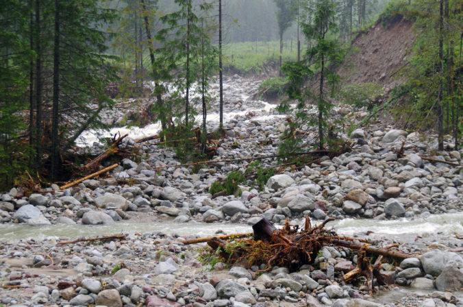 Niektoré tatranské chodníky sú uzatvorené, dôvodom je riziko padania konárov a stromov