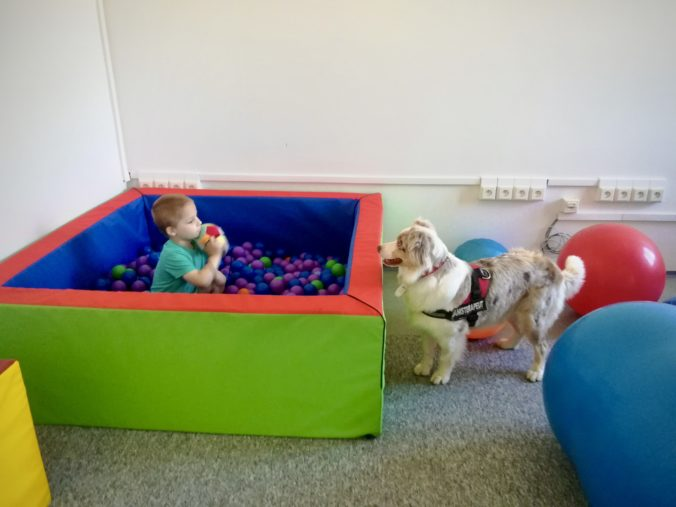 150 000 eur pre rodiny s deťmi s autizmom a Centrá pre deti a rodiny ako pomoc v druhej vlne pandémie
