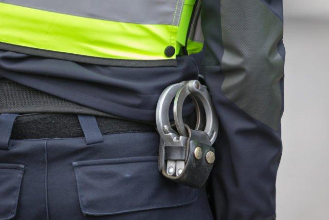 Zákrok polície v Tepliciach vyvolal vlnu nevôle. V Prahe sa už chystá demonštrácia (video)