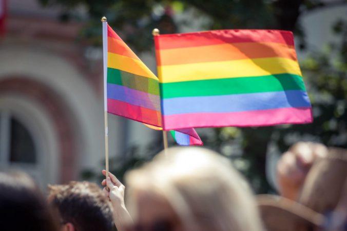 Poslanci OĽaNO plánujú predstaviť návrh uznesenia, vyjadriť chcú podporu a uznanie ľuďom LGBTI komunity
